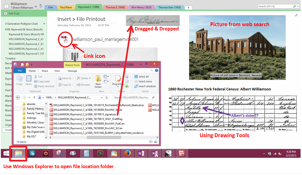 using onenote for genealogy
